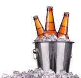 在被隔绝的冰桶的啤酒瓶 图库摄影
