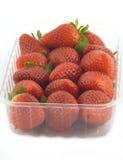 在被隔绝的塑胶容器的成熟草莓 免版税库存图片