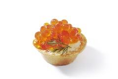 在被隔绝的果子馅饼的红色鱼子酱 库存照片