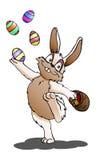 在被隔绝的白色背景的复活节兔子 免版税库存照片