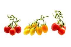 在被隔绝的白色背景的新鲜的红色蕃茄 库存图片
