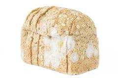 在被隔绝的白色背景的面包切的和真菌 免版税库存照片