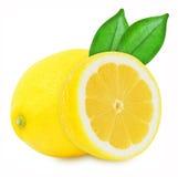 在被隔绝的白色背景的水多的黄色柠檬 图库摄影