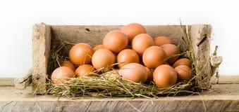 在被隔绝的篮子的鸡鸡蛋。有机食品 免版税图库摄影