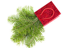 在被隔绝的红色纸袋的冷杉木枝杈 免版税库存图片