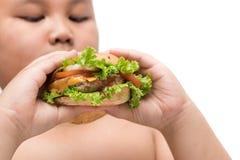 在被隔绝的肥胖肥胖男孩手背景的猪肉汉堡包 免版税库存照片