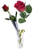 在被隔绝的草的一朵红色玫瑰 免版税库存照片
