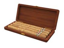 在被隔绝的雪茄盒的雪茄 免版税图库摄影