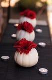 在被雕刻的白色凯斯普尔南瓜的红色大丁草雏菊 免版税图库摄影
