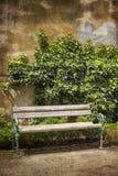 在被风化的墙壁前面的长木凳有常春藤的 免版税图库摄影