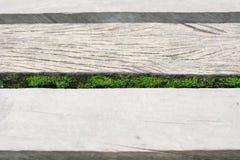 在被风化的灰色木木板走道的青苔 免版税库存图片
