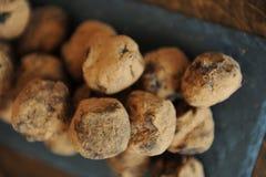 在被洒的可可粉的块菌状巧克力 在木背景的板岩板 特写镜头,纹理 免版税库存图片