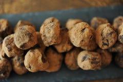 在被洒的可可粉的块菌状巧克力 在木背景的板岩板 特写镜头,纹理 免版税库存照片