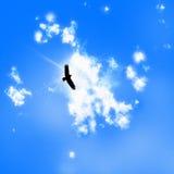 在被绘的蓝色山天空的鸟剪影 免版税库存照片