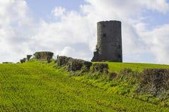 在裁减干草领域的一个老石塔在一个农场在唐郡在爱尔兰 免版税库存照片