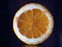 在裁减的柠檬在镜子 库存照片