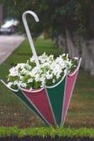 在装饰伞的花 免版税库存图片