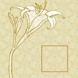 在装饰品的背景的金黄百合 免版税库存图片