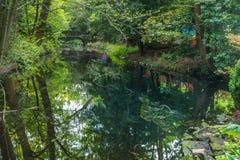 在装饰庭院池塘的被成拱形的木桥 库存照片