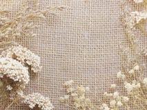 在装饰桌布的花在袋装的背景空间和构成 库存照片