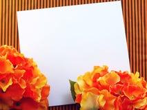 在装饰用葡萄酒过滤器颜色做的背景空间和构成的花 库存图片