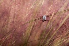 在装饰草暂停的婚戒 图库摄影