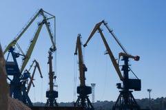 在装货的港口起重机在海港 免版税库存图片