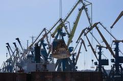 在装货的港口起重机在海港 免版税库存照片