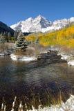 在褐红的响铃的秋天-垂直 图库摄影
