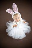 逗人喜爱的小的兔宝宝 库存图片