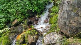 在西伯利亚河的小瀑布 库存图片