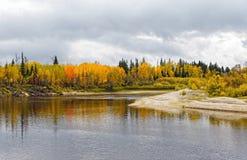 在西伯利亚taiga的秋天中午,从河的看法 库存图片