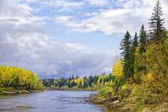 在西伯利亚taiga的秋天中午,从河的看法 库存照片
