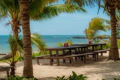 在西安钾生物圈的海滩'自然保护 库存图片
