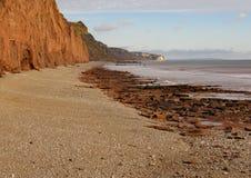 在西德茅斯的木瓦海滩在有侏罗纪海岸的红砂岩峭壁的德文郡在背景中 免版税库存照片