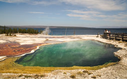在西方拇指喷泉水池、森林和天空的深渊水池作为背景黄石国家公园,反射,早晨, WY,美国 库存图片