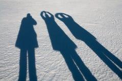 在西海岸的冬天风景,瑞典 免版税库存图片