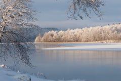 在西海岸的冬天风景,瑞典 免版税图库摄影