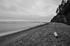 在西海岸足迹的海滩 免版税图库摄影