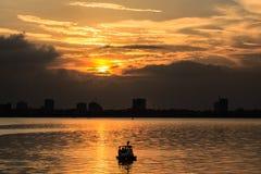 在西湖的日落 库存图片