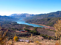 在西班牙使Tranco水库陷入沼泽 免版税库存图片