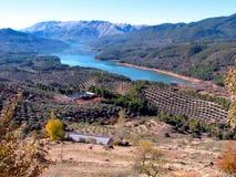 在西班牙使Tranco水库陷入沼泽 库存图片
