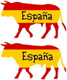 在西班牙养殖的公牛 库存照片