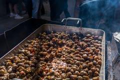 在西红柿酱烹调的蜗牛 免版税库存照片