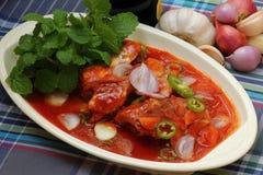 在西红柿酱的辣沙丁鱼装鱼于罐中,泰国食物样式 免版税库存照片