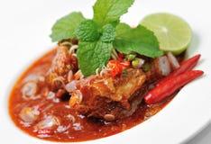 在西红柿酱的辣沙丁鱼 免版税库存图片