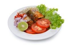 在西红柿酱,罐装鱼的辣沙丁鱼 免版税库存图片