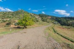 在西部天山山的土路 免版税图库摄影