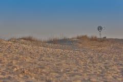 在西部得克萨斯沙漠的孤立风车 库存图片