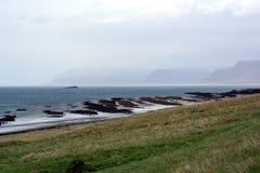 在西部海湾的海岸的Turbidites在冰岛 库存照片